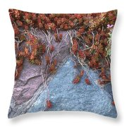 Plants On The Rock Two  Throw Pillow