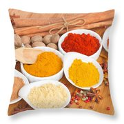 Plates Of Spices  Throw Pillow