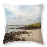 Playa De La Estacion On Santa Cruz Island In Galapagos Throw Pillow