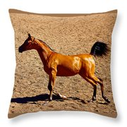 Playful Canter Throw Pillow