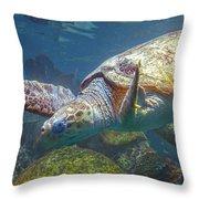 Playful Green Sea Turtle Throw Pillow