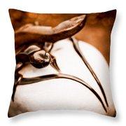 Playful Lizard Throw Pillow