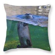 Playful Otter Throw Pillow