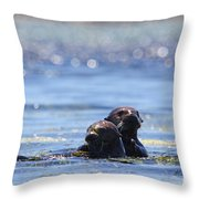 Playful Pair Throw Pillow