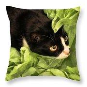 Playful Tuxedo Kitty In Green Tissue Paper Throw Pillow