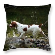 Playing In The Creek Throw Pillow