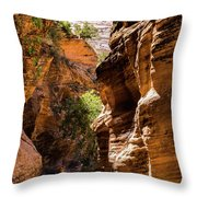 Playing The Slots In Zion Throw Pillow