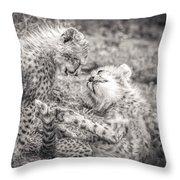 Playtime In Africa- Cheetah Cubs Acinonyx Jubatus Throw Pillow