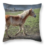 Playtime Is Over  2534 Throw Pillow