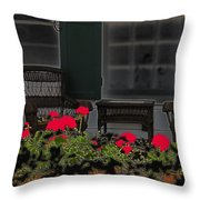 Pleasant Evening Throw Pillow