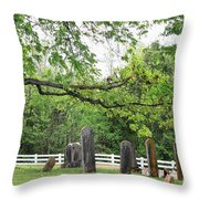 Pleasant Forest Cemetery Throw Pillow