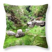 Pleasant Nature Throw Pillow