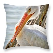 Pleasant Pelican Throw Pillow