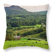 Pleasant Valley Countryside Throw Pillow