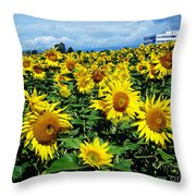 Pleasant Warmth Throw Pillow