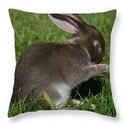 Please Carrots For Dinner Throw Pillow