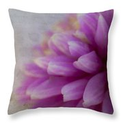 Enduring Grace Throw Pillow by Jeff Swanson