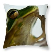 Please Not In A Frogs Eye Throw Pillow