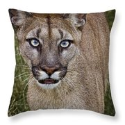 Please Stroke Me Throw Pillow