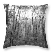 Pleasure Of Pathless Woods Bw Throw Pillow