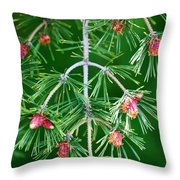 Plentiful Pine Throw Pillow