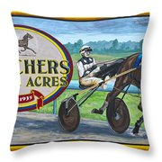 Pletchers Racing Mural Shipshewana Throw Pillow