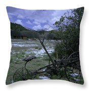 Plow Throw Pillow