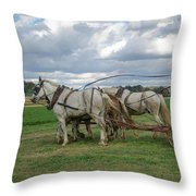 Plowing In Lancaster County Throw Pillow