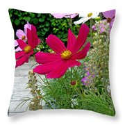 Pluckin Beauties Throw Pillow