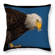 Plucking Feather's From Prey Throw Pillow