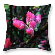 Plum Blossom 1 Throw Pillow