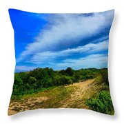 Plum Island Dunes Throw Pillow
