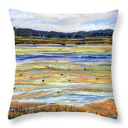 Plum Island Salt Marsh Throw Pillow