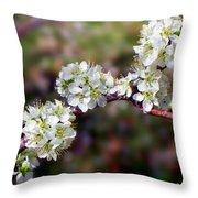 Plum Tree Blossoms Throw Pillow