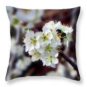 Plum Tree Blossoms II Throw Pillow