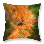 plumage II Throw Pillow
