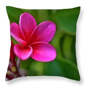 Plumeria - Royal Hawaiian Throw Pillow