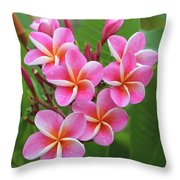 Plumeria After The Rain II Throw Pillow