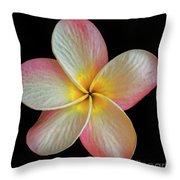 Plumeria Flower On Black Throw Pillow