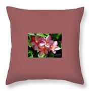 Plumeria Flowers  Throw Pillow