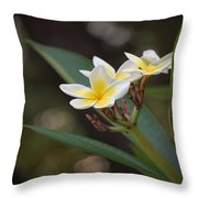 Plumeria II Throw Pillow