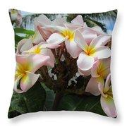 Plumeria In Pink 3 Throw Pillow