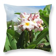 Plumeria In Pink Throw Pillow