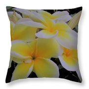 Plumeria In Yellow 4 Throw Pillow