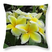 Plumeria In Yellow  5 Throw Pillow