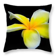 Plumeria In Yellow Throw Pillow