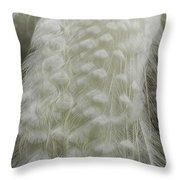 Plumey White Throw Pillow
