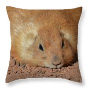 Plump Resting Prairie Dog Laying Down Throw Pillow