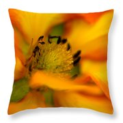 Plush Petals Throw Pillow