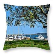 Plymouth Harbor Throw Pillow